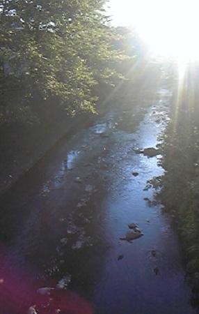 光のさす川面.jpg